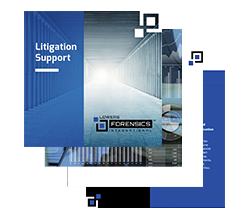 litigation-support